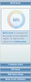 Bleu score