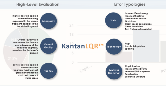 KantanLQR KantanMT Language Quality Review Typologies